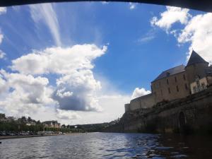 Vue du Château sous le pont Notre-Dame